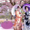 tim hieu ve o du nghe thuat wagasa nhat ban 100x100 - Tìm hiểu về ô dù nghệ thuật Wagasa Nhật Bản
